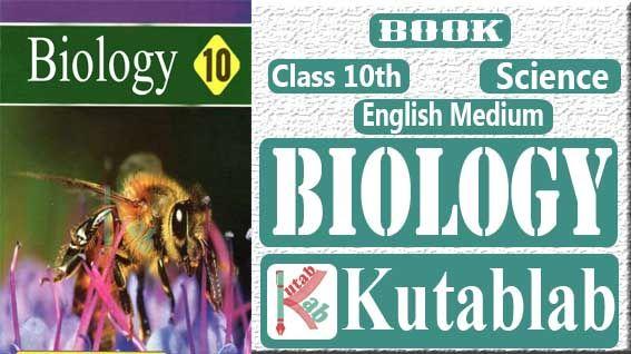 10th Class Biology Book English Medium Pdf Download Free Physics Books English Medium Books