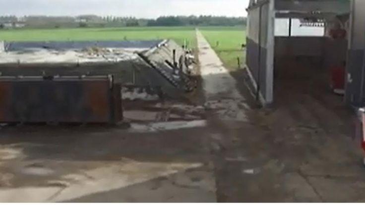 """""""Des remorques autoguidées au milieu des fermes, des poulets élevés à l'aide de caméras infrarouges et nourris par ordinateur, et des légumes qui poussent sans lumière du soleil. L'agriculture hollandaise est l'une des plus technologiques au monde.""""...  http://mobile.francetvinfo.fr/decouverte/gadgets/pays-bas-la-ferme-du-futur_1881925.html#xtref=http://m.facebook.com/&xtref=acc_dir"""