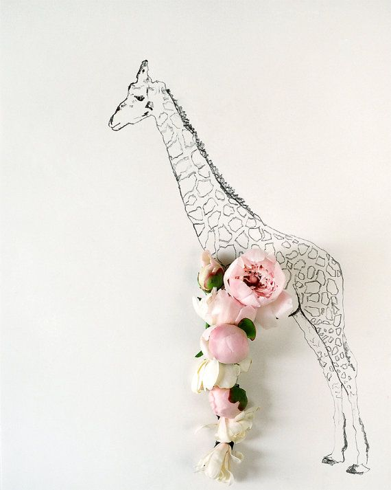 Giraffe and Flower Photograph No. 88224 by kariherer on Etsy, $30.00