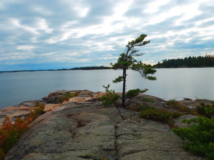 Wreck Island, a popular hikers summer destination, is located in the Sans Souci area of Georgian Bay, and is accessible by the Massassauga Provincial Park, or by boat.