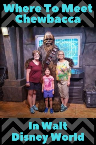 Wondering where to meet Chewbacca in Walt Disney World?   Click here to find out where to see the big guy, because you definitely don't want to miss this meet and greet!