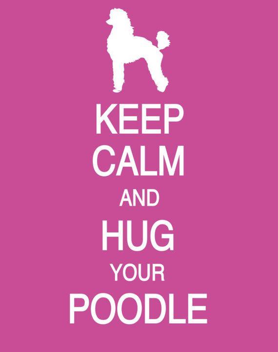 Pick a Poodle, Any Poodle! @Karen Elizabeth @Michelle Sceva @Emily Fetterolf