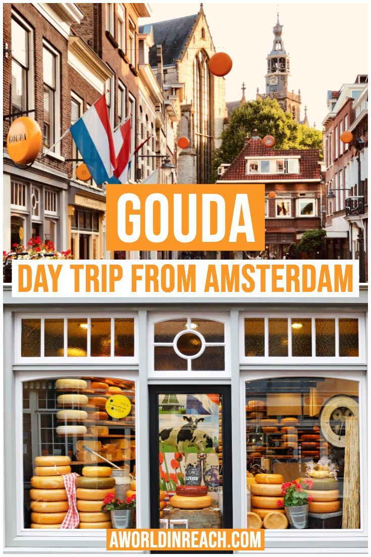 The Best Day Trips From Amsterdam Recommended By Travelers Day Trips From Amsterdam Netherlands Travel Day Trips