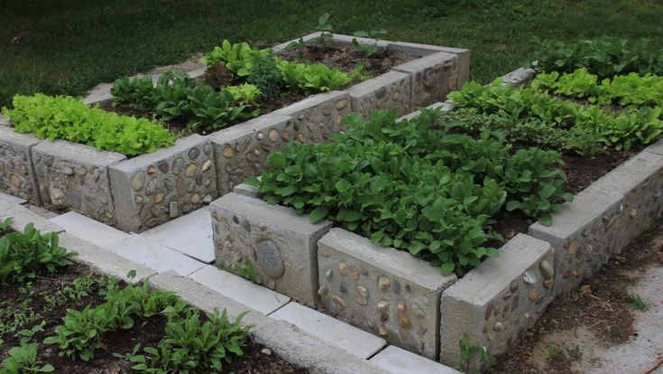 I made these raised beds for my veggies.