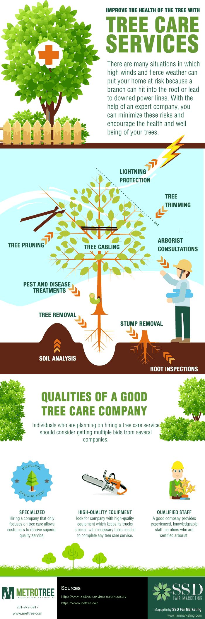 Gifographic for Tree Care