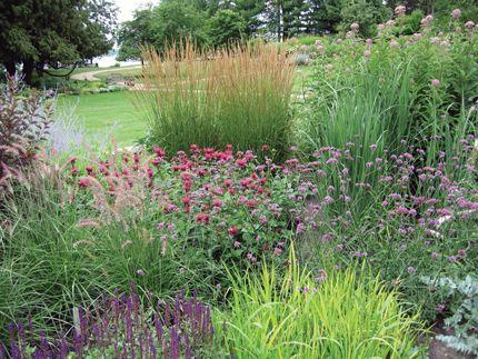 Top 25 best Sun garden ideas on Pinterest Full sun garden Full