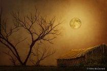 Moonglow over Polenz Ranch