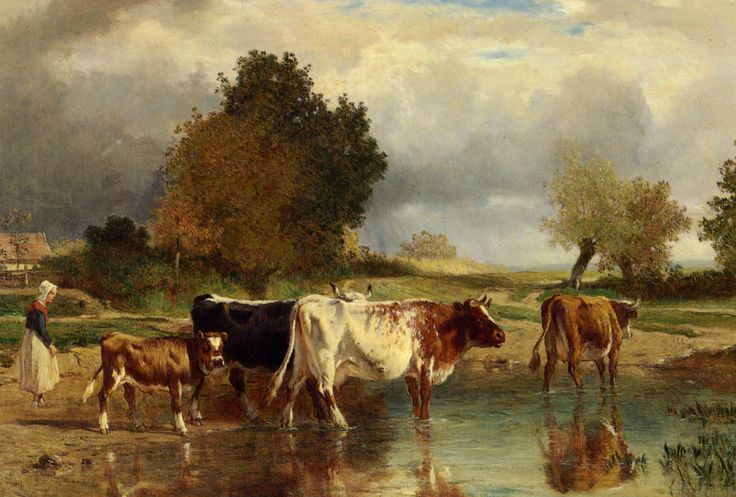 Constant Troyon-Calf cows at the marl