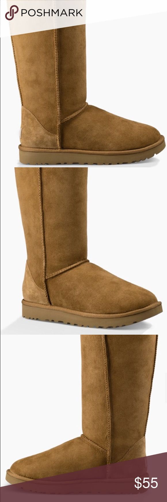 Tan tall Ugg Boots (Chestnut) Well-worn ugg Australia tall Chestnut boots. The are tiny stains on the front of the boot. UGG Shoes Winter & Rain Boots