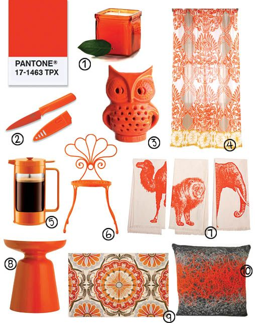 Pantone Color Of The Year 2012 51 best color of the year 2012 - tangerine tango images on