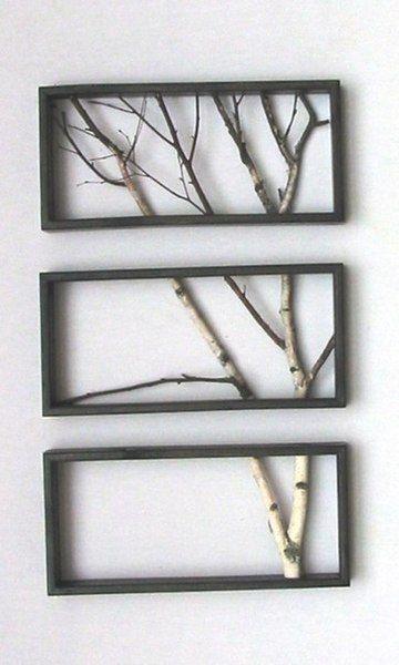 Ağaç Dallarından Çerçeve