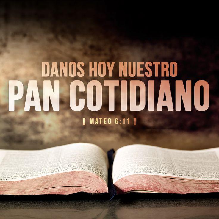 """Cada día necesitamos alimentos, tanto físicos como espirituales. Debemos orar para que Dios nos dé lo suficiente para comer hoy, y confiamos en Él un día a la vez para alimentarnos espiritualmente. """"El hombre no vive solamente de pan"""", dijo Jesús, """"sino de toda palabra que sale de la boca de Dios."""" Ora: """"Dios alimenta mi cuerpo mientras yo trabajo para proveer, y alimentar a mi alma mientras leo Tu Santa Palabra."""""""