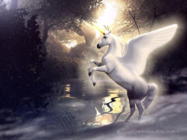 """""""The White Winged Unicorn"""" Zo heb ik ook eens in opdracht ..."""
