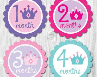 Baby Girl Monthly Stickers Baby Monthly Stickers by ChevronSmiles