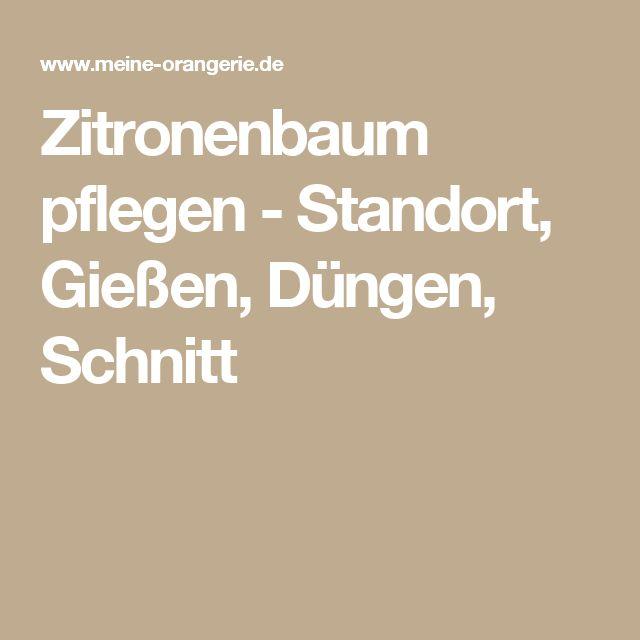 Zitronenbaum pflegen - Standort, Gießen, Düngen, Schnitt