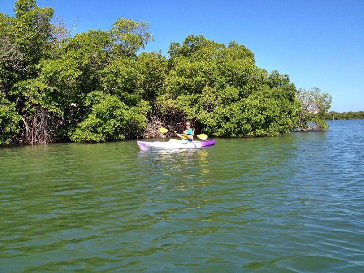 Kayakfahren in Fort Myers Beach - empfehlenswert und sehr mit der Natur verbunden.
