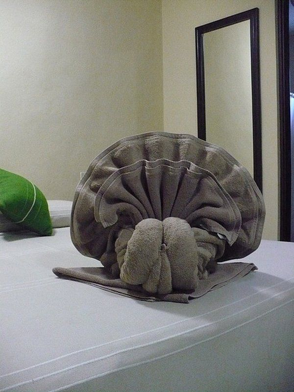 Amazing looking shell towel origami. Design your towels into something really creative and fun to look at.