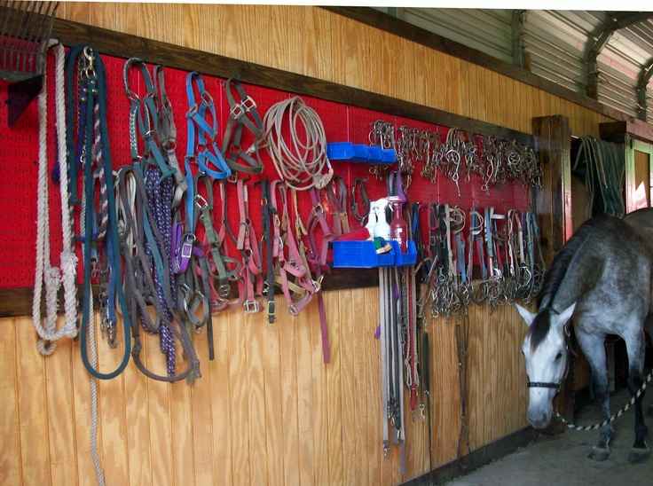 Metal Pegboard for horse bridle gear storage and farm and ranch equipment storage and organization