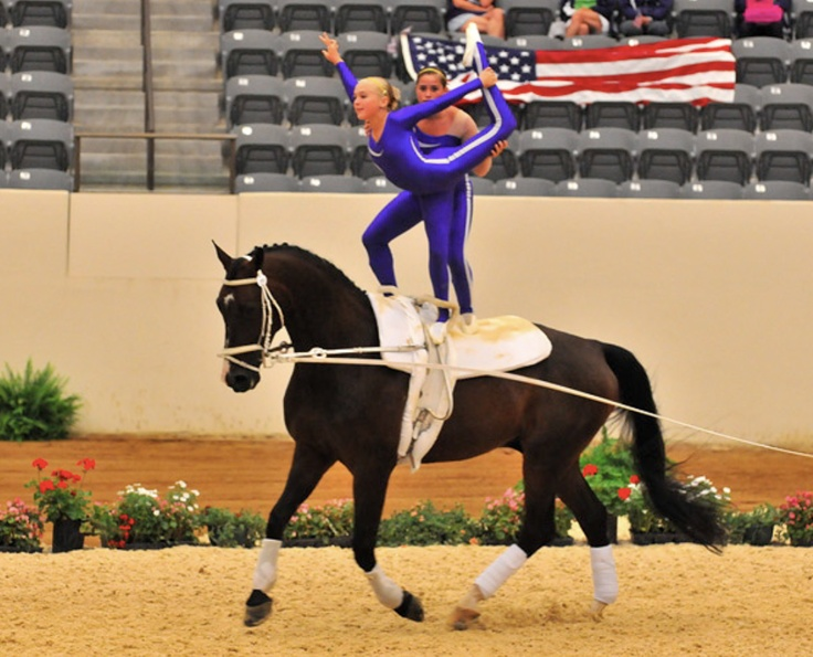 Amazing Us Vaulting Team And Platinum Performance Horse
