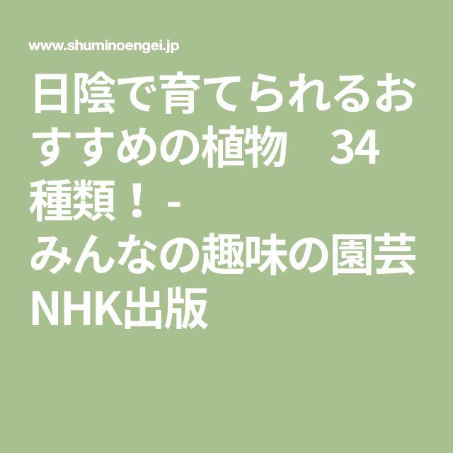 日陰で育てられるおすすめの植物 34種類! - みんなの趣味の園芸 NHK出版
