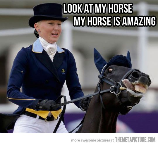Look at my horse my horse is amazing! Nothing like some crazy in the middle of a dressage test! @SMRequestrian www.stylemyride.com