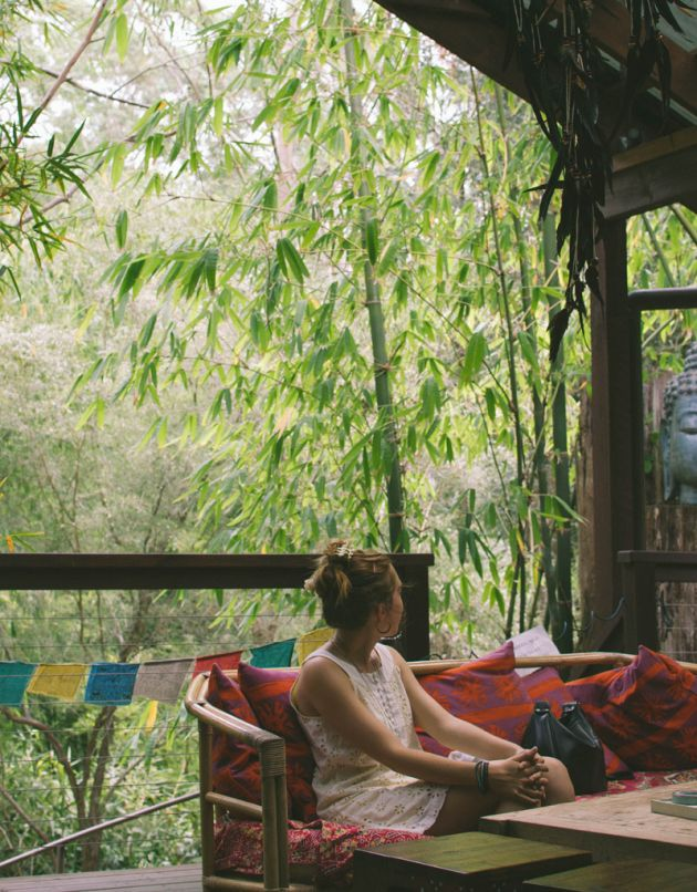 Bamboo Buddah located on Wattle Tree Road. A unique and enticing cafe surrounded by rainforest and fish ponds