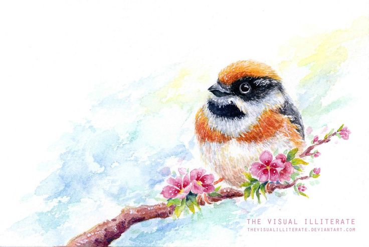 "Media: watercolor on Saunders Waterford watercolor paper (300g) Size: 4""x6"" Bird Name: Red-Headed Tit or Black-Throated Tit  Binomial Name: Aegithalos Concinnus  Others in the Series:&nbs..."