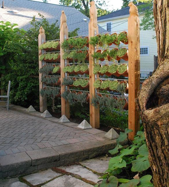 great privacy wall made of wooden posts and planters filled with herbs and succulents.