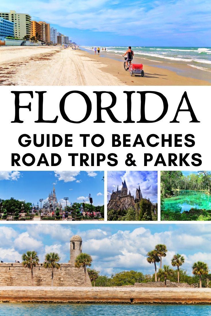 Florida Travel Guide Best Things To Do And See Florida Travel Guide Florida Travel Beach Road Trip