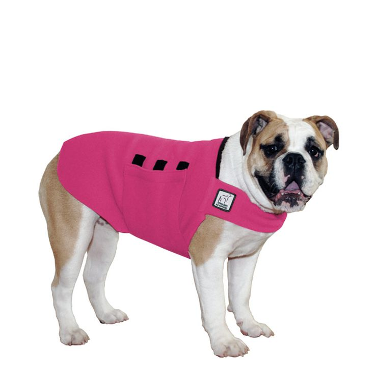 Magenta Pink English Bulldog Dog Tummy Warmer, great for warmth, anxiety and laying with our dog rain coat. High performance material. Made in the USA.