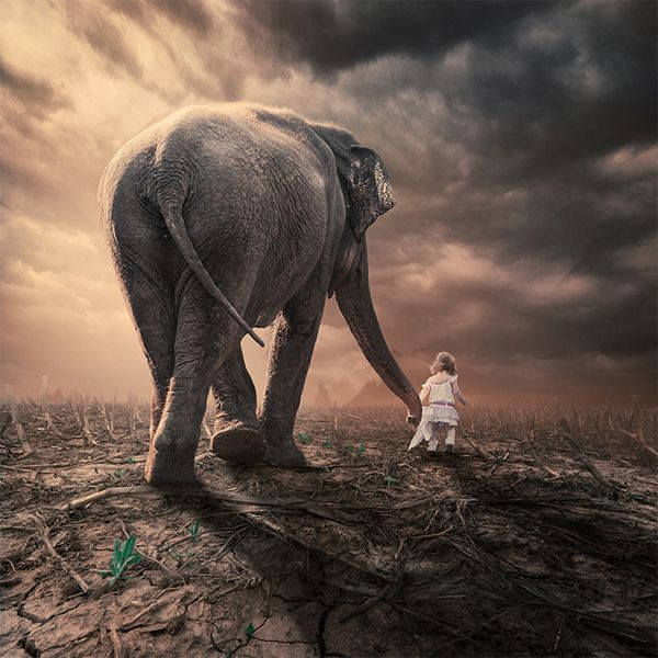 13 Dream-Like Photo Manipulations by Caras Ionut - Enpundit