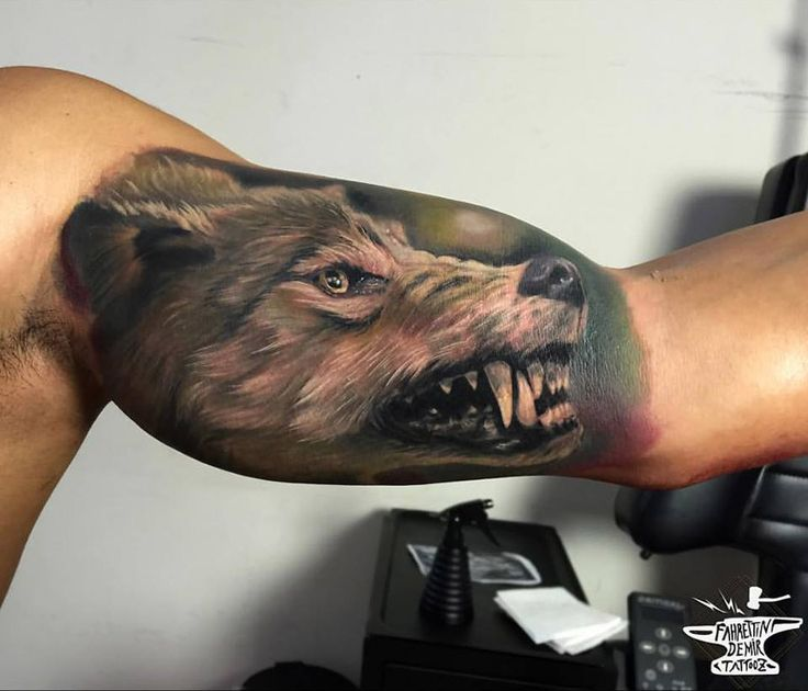 Snarling Wolf Bicep Tattoo http://tattooideas247.com/realistic-wolf-bicep/