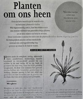 Digitale Bibliotheek: 27mei16 Kruiden, Planten en toepassingen Weegbree,...