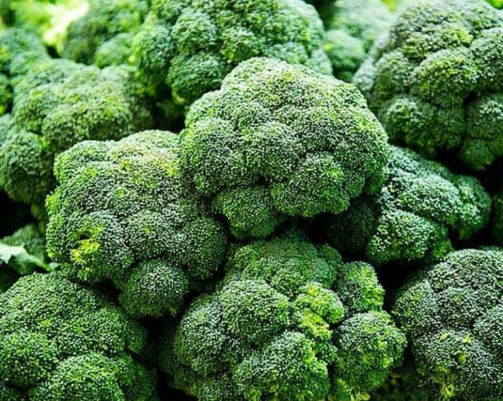 broccoli 1 Health, Lower estrogen levels, Health diet