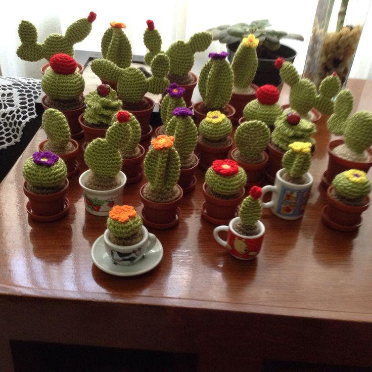 ¡Producción de cactus!