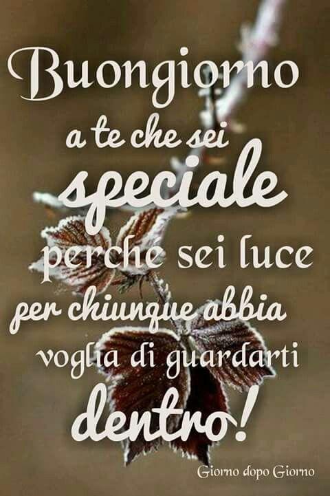 73 best images about buongiorno buonanotte on for Top immagini buongiorno
