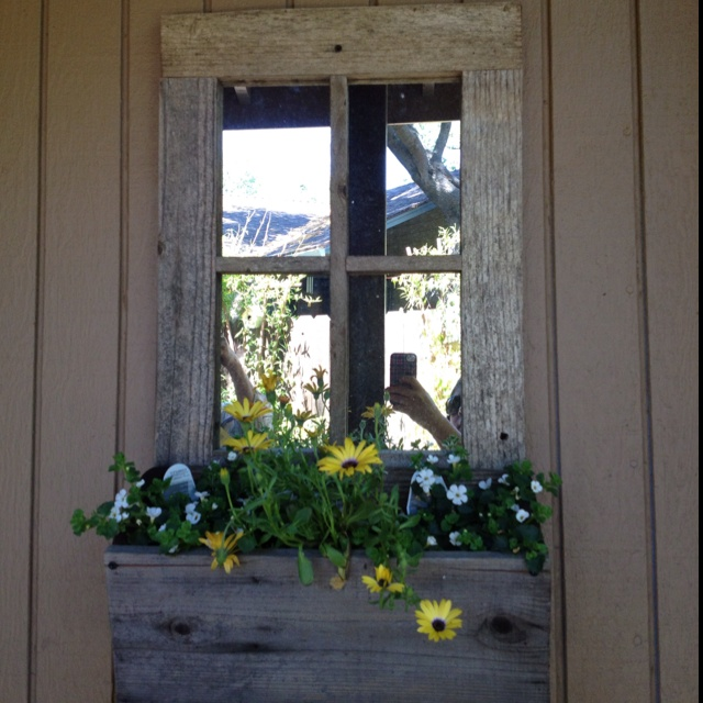 Shed by emother33 34 gardening ideas to discover on for Window mirror ideas