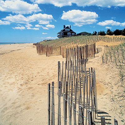 Navigate the posh enclaves of the Hamptons like a local with writer Kate Betts' guide to the best and lesser-known spots to dine, shop, and relax.