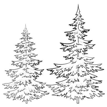 Trees Fur Tree Vector Christmas Winter Symbol Isolated Contours