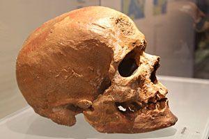 Cro-magnon-35000ans-Cro-Magnon-Eyzies-De-Tayac-vallée-de-la-Vezere-Périgord-Dordogne-homo-sapiens