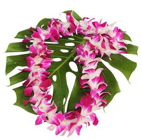 $6.99 Single Purple Orchid Lei