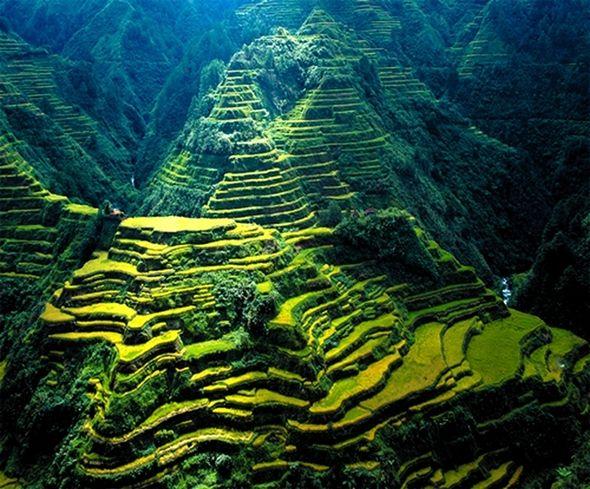 Terraços de Banaue fazem parte dos terraços de arroz da Cordilheira das Filipinas.