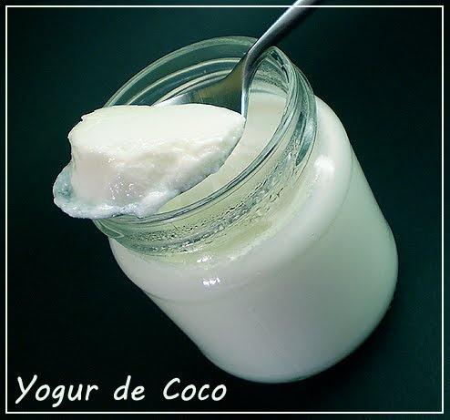 Yogures Caseros: YOGUR DE COCO