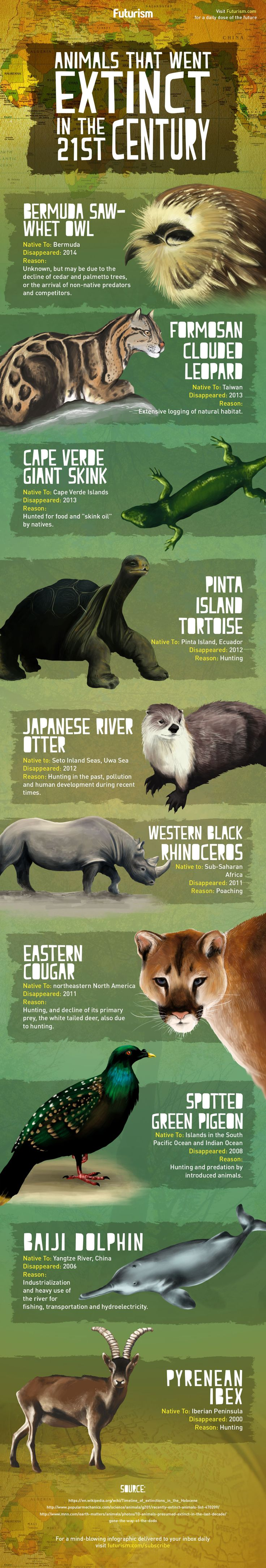 According to new research, biodiversity across much of Earth has dropped below safe levels. Here are some of the species we've lost this century. http://futurism.com/images/animals-that-went-extinct-in-the-21st-century-infographic/?utm_campaign=coschedule&utm_source=pinterest&utm_medium=Futurism&utm_content=Animals%20That%20Went%20Extinct%20In%20The%2021st%20Century%20%5BInfographic%5D