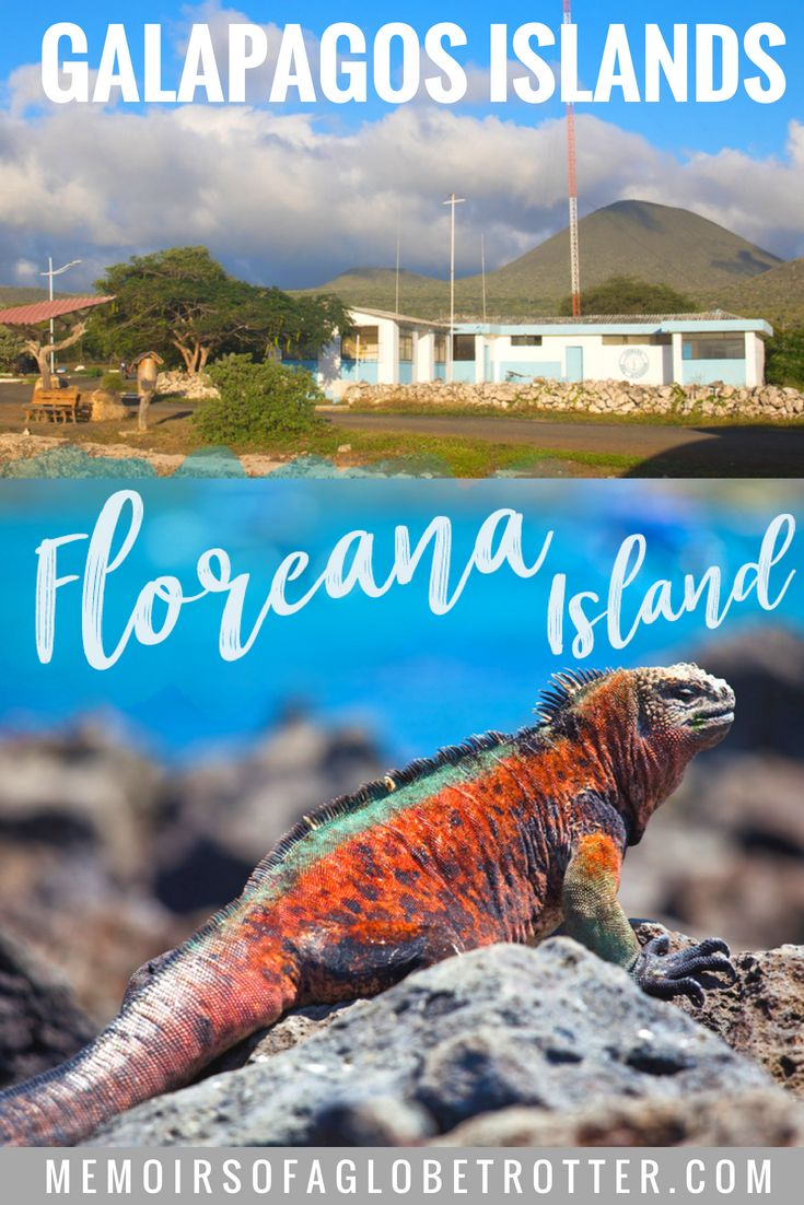 A Guide to Visiting Floreana Island 1578