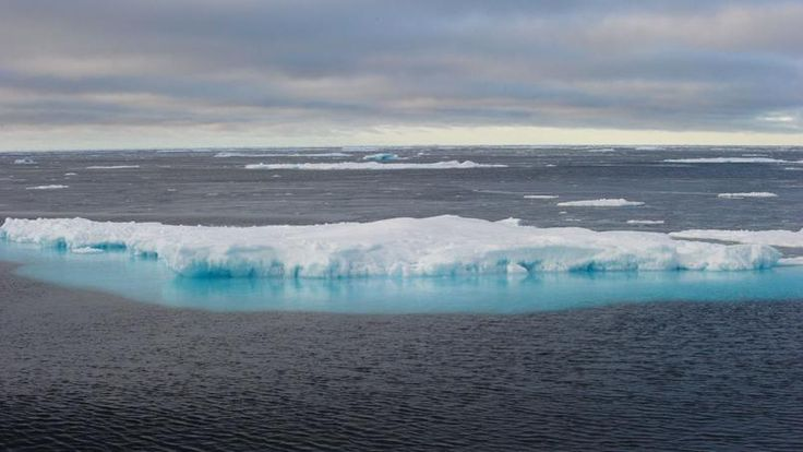 Cette photo prise le 23 septembre montre des blocs de glace à la dérive, dans l'Arctique, au large du Canada. Le Pôle Nord, déjà l'une des régions les plus affectées par le réchauffement climatique, connaît en ce moment des températures supérieures de 20°C aux normales saisonnières.