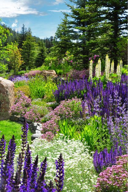 Just a beautiful location with the purple, white and green plants. Looks like a painting!!