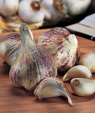 10 Great Vegetables to Grow In FallFall Vegetables Gardens, Growing Plants, Garlic Seeds, Fall Projects, Ears Italian, Veggies Gardens, Summer Heat, Italian Garlic, Early Italian