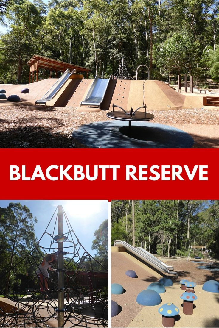 Playgrounds, peacocks, koalas and kids. How much fun is a family day out at Blackbutt Reserve in New Lambton? It's one of our favourite local spots.