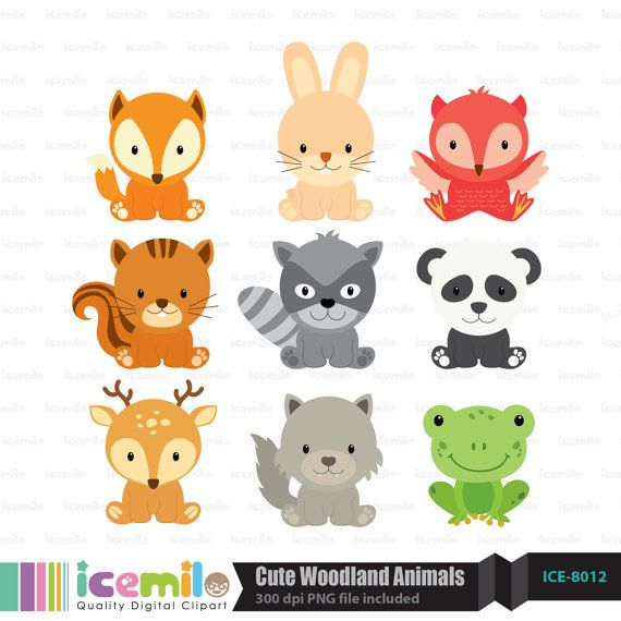 Cute Woodland Animals Digital Clipart by IcemiloClipart on Etsy, $5.00